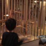 おもちゃ美術館おもちゃの森1